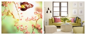 Soft pastel colour scheme inspired by a butterfly and surroundings.