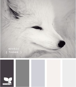 Grey colour palette